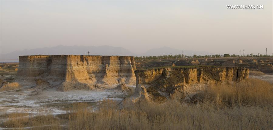 CHINA-SHANXI-DATONG-SOIL FOREST (CN)