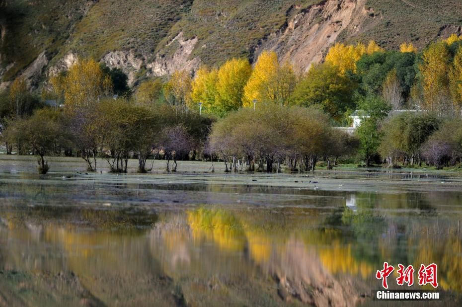 Amazing autumn scenery of Ganzi Tibetan Autonomous Prefecture