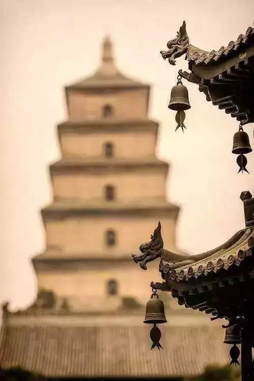 古代中国建筑房檐下容易被燕子等鸟类筑巢,为了驱逐他们就设置了檐