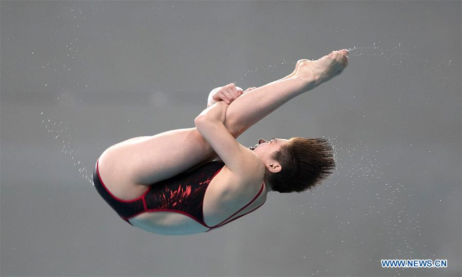 (SP)CHINA-BEIJING-DIVING-FINA WORLD SERIES