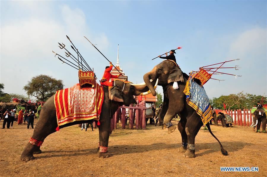 National Elephant Day marked in Ayutthaya, Thailand
