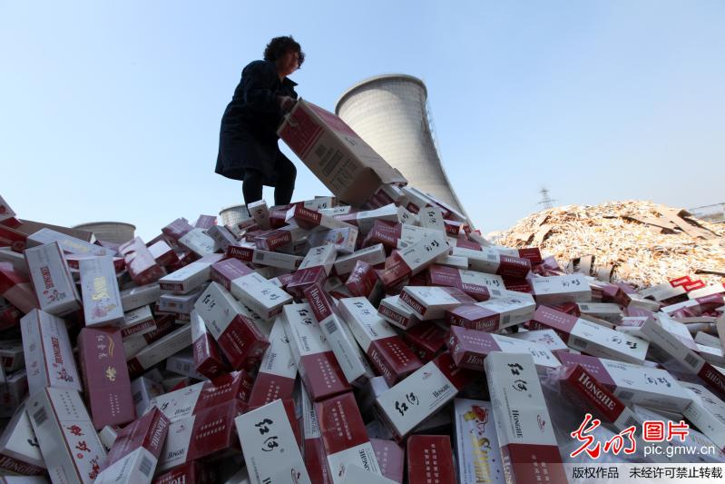 Counterfeit cigarettes go up in smoke to generate electricity