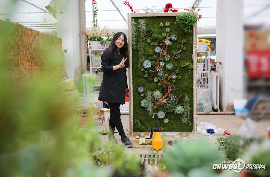 Shaanxi girl creates special succulent artwork