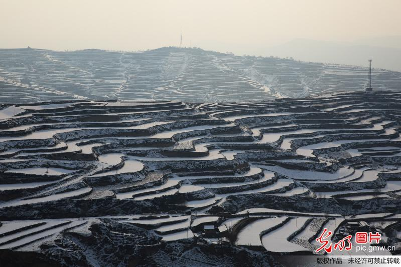 Scenery of terraced fields after snowfall in N China's Gansu