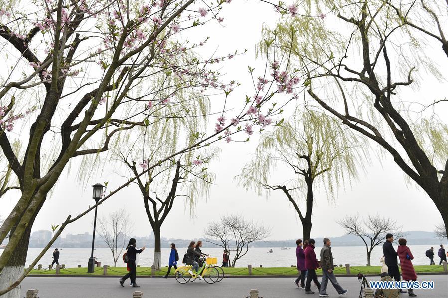 Tourists visit Bai Causeway in West Lake scenic area in Hangzhou, capital of east China's Zhejiang Province, March 17, 2017. (Xinhua/Huang Zongzhi)