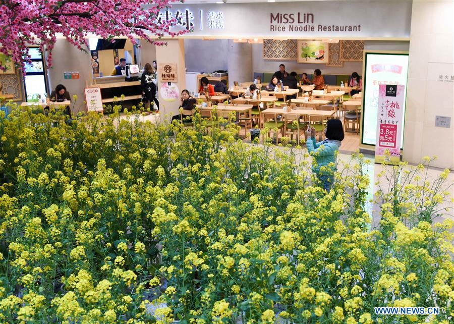 Citizens shop at a mall decorated with rapeseed flowers in Chongqing, southwest China, March 17, 2017. A local mall brought spring rural sceneries indoor to attract consumers. (Xinhua/Liu Chan)