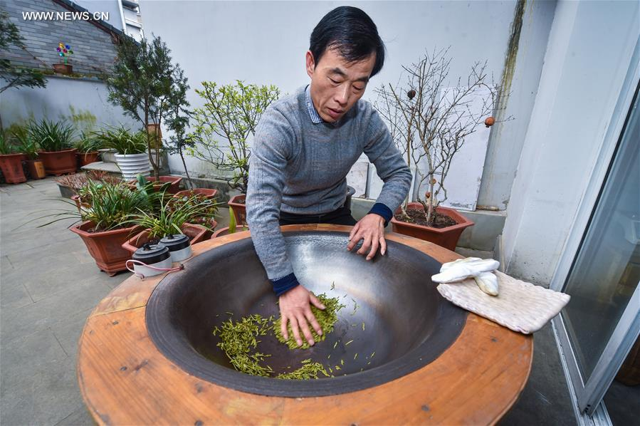 CHINA-ZHEJIANG-MINGQIAN TEA-HARVEST (CN)