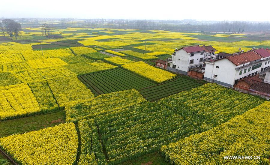 CHINA-SHAANXI-SPRING SCENERY (CN)