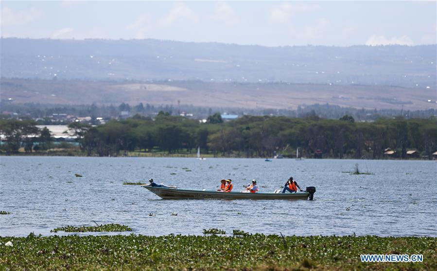 KENYA-LAKE NAIVASHA-SCENERY