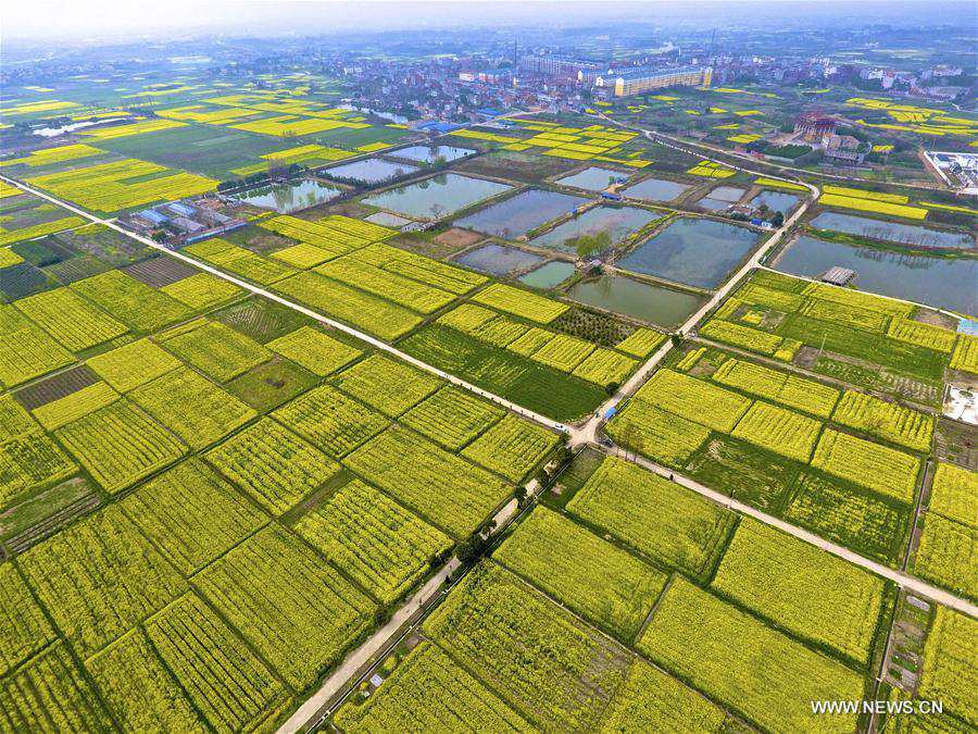 Spring scenery of Fengshan Town, China's Hubei