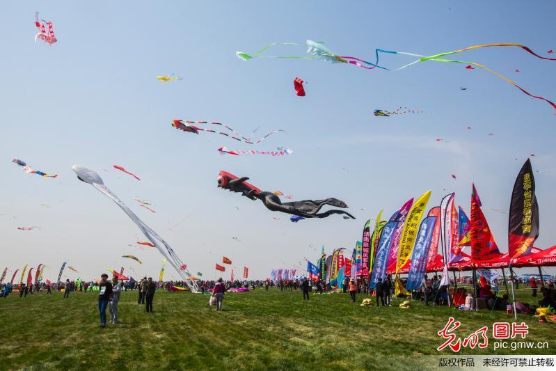 第34届潍坊国际风筝会开幕