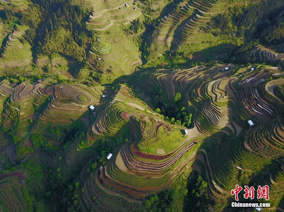 Terraced fields in Guizhou