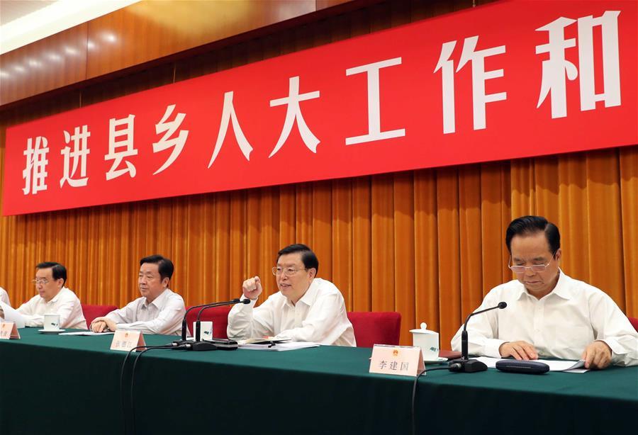 CHINA-BEIJING-ZHANG DEJIANG-SYMPOSIUM (CN)