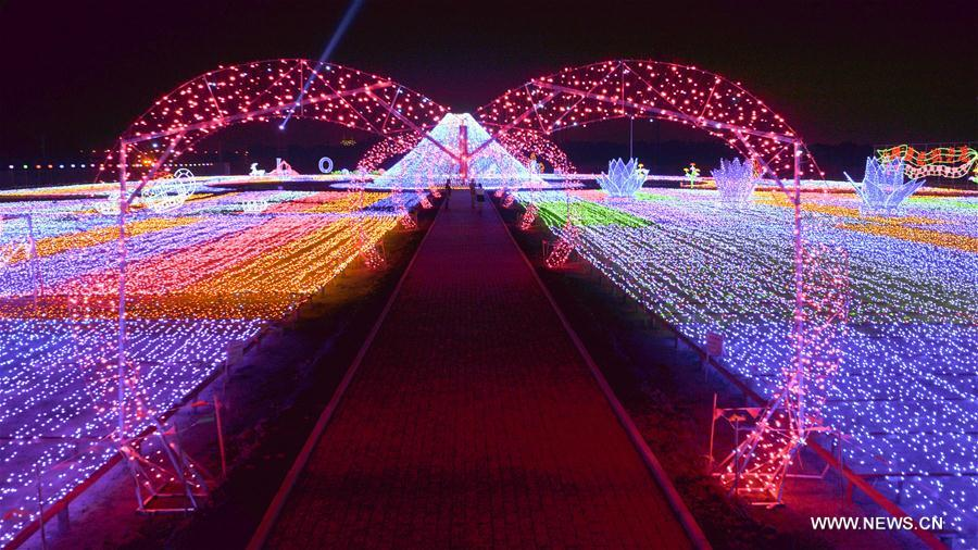 CHINA-HARBIN-LIGHT FESTIVAL (CN)