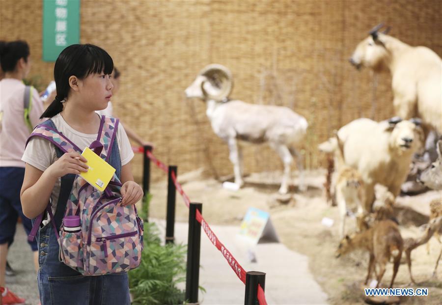 #CHINA-HEBEI-SUMMER VACATION