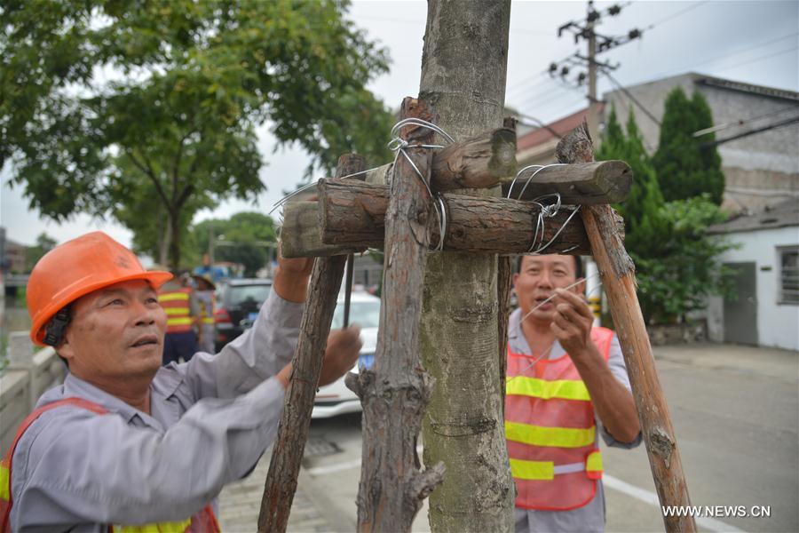 #CHINA-ZHEJIANG-TYPHOON TALIM-APPROACH (CN)