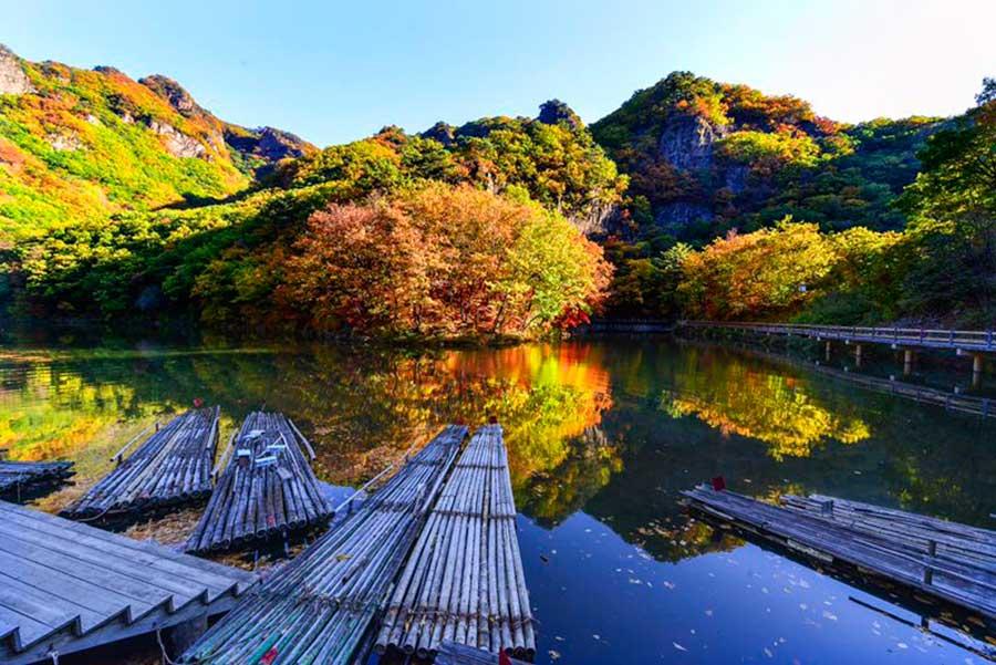 Beautiful maple leaves in Benxi