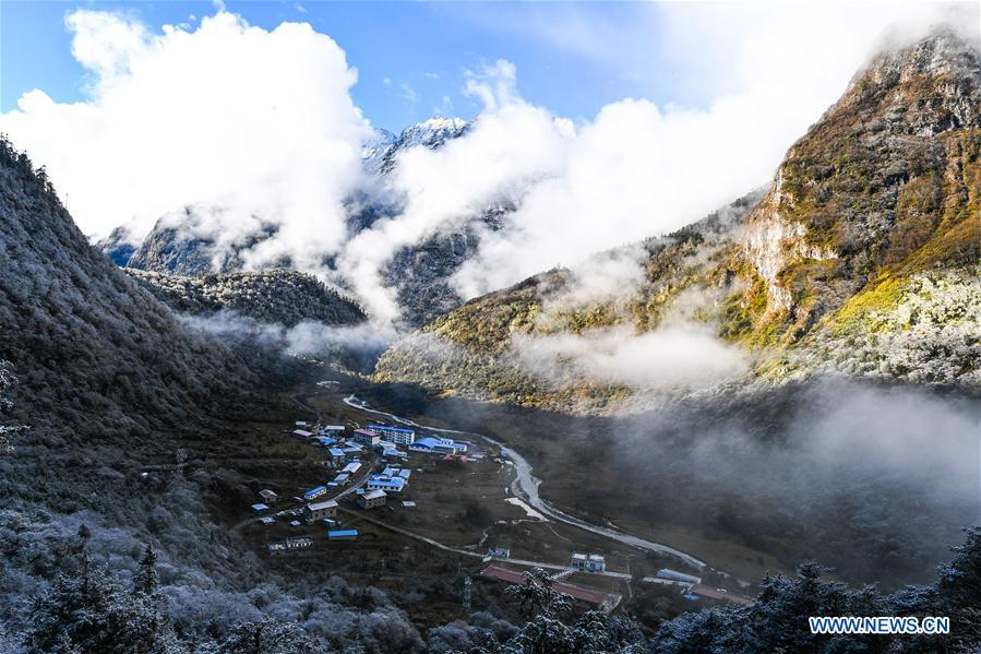 CHINA-TIBET-YUMAI-SCENERY (CN)