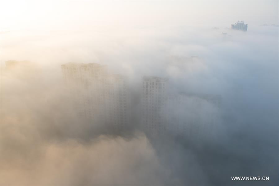 CHINA-ZHEJIANG-FOG (CN)