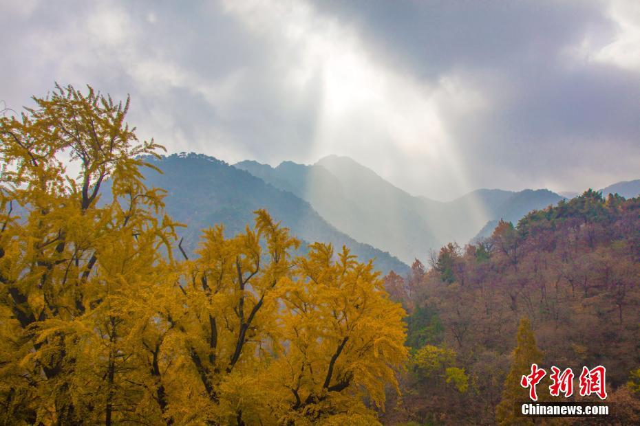 Fascinating autumn scenery of Yuquan Temple at Mount Tai, E China