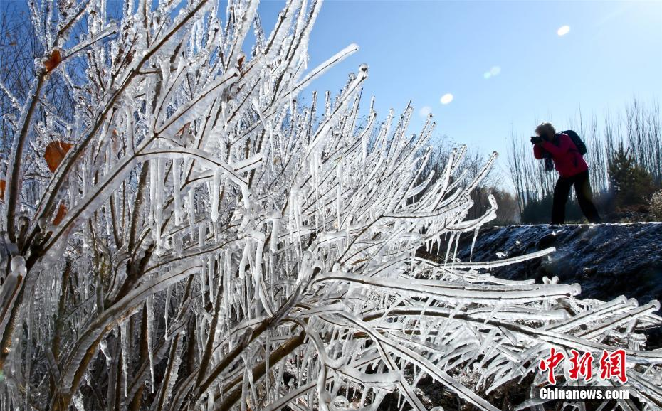 Icicles seen in NW China's Gansu Province