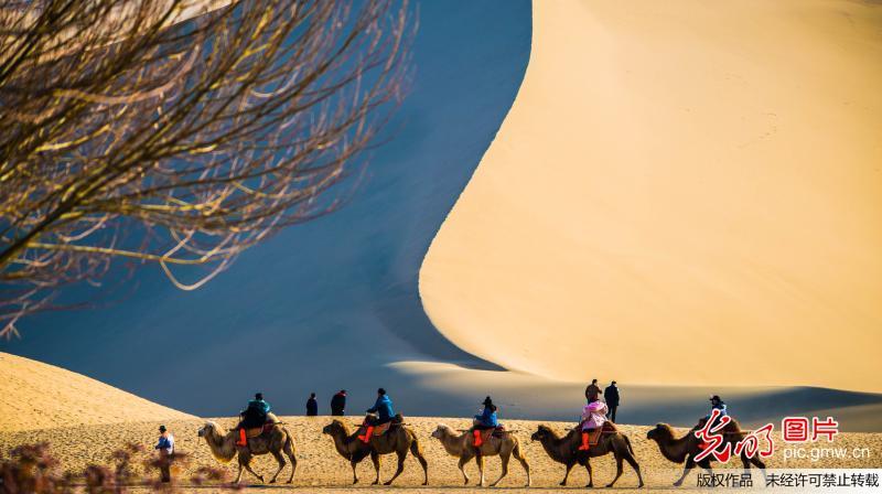 甘肃敦煌:大漠风情引游客