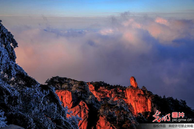 Stunning scenery of rime and sea of clouds seen in Mount Huangshan
