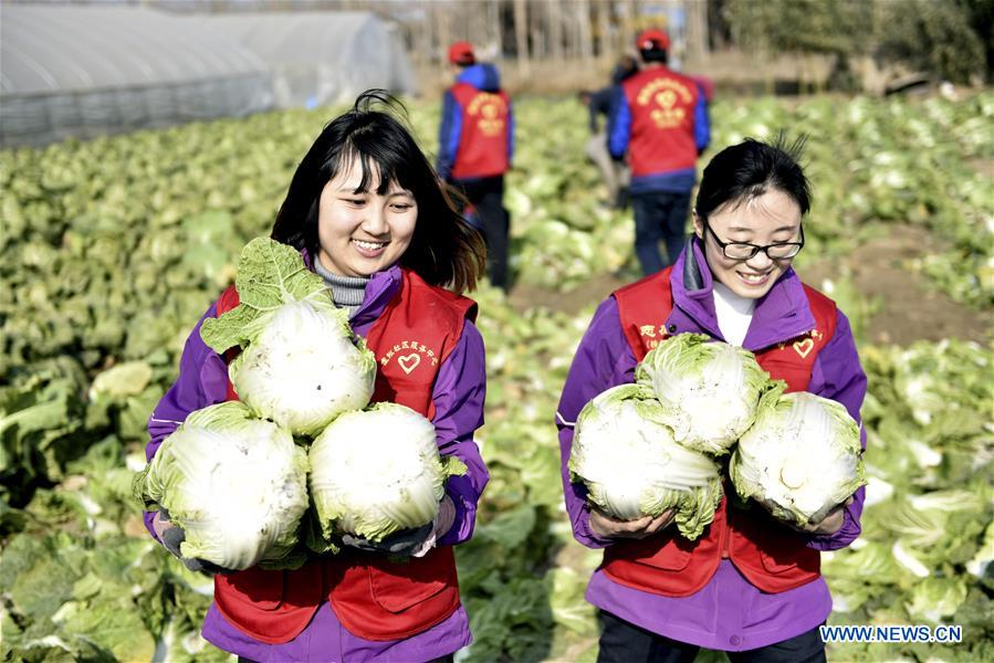# CHINA-INTERNATIONAL VOLUNTEER DAY(CN)