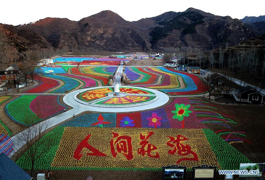#CHINA-BEIJING-PINWHEEL (CN)