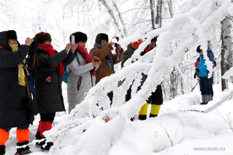 CHINA-INNER MONGOLIA-WINTER-RIME (CN)