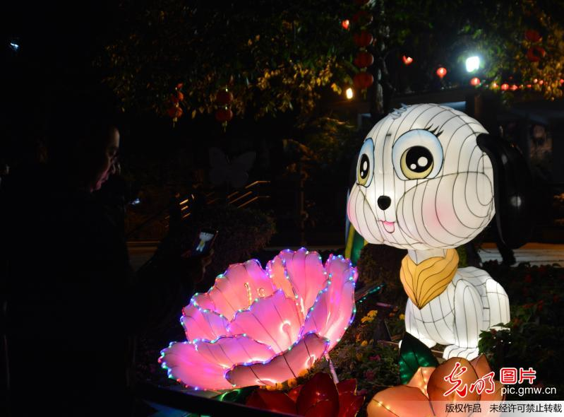 Scenery of lantern show in SE China's Guangzhou
