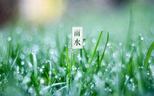 【有礼有节】雨水:雪消门外千山绿,花发江边二月晴