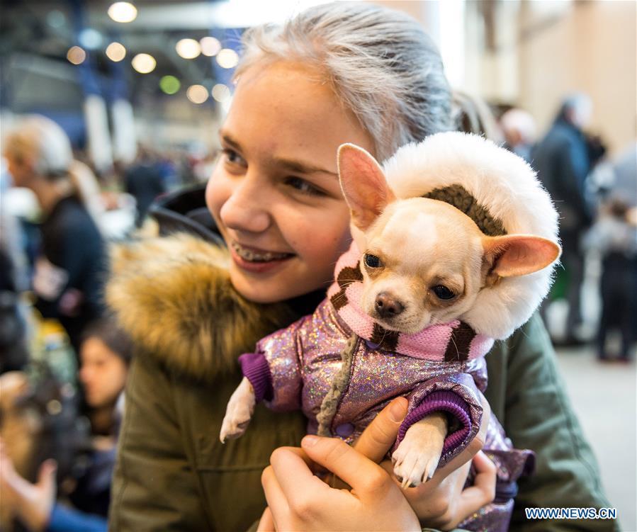 LITHUANIA-VILNIUS-DOG SHOW