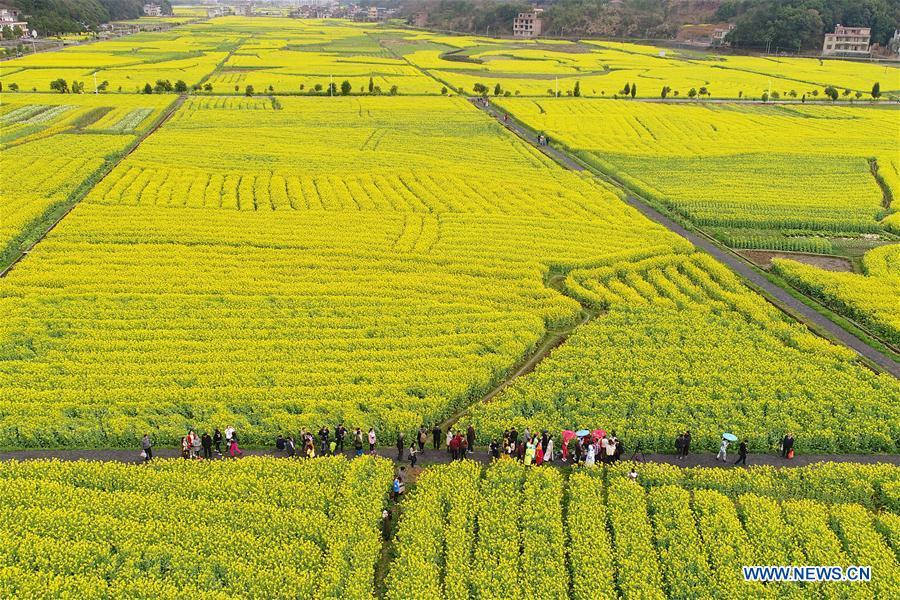 #CHINA-HUNAN-HENGYANG-SPRING (CN)