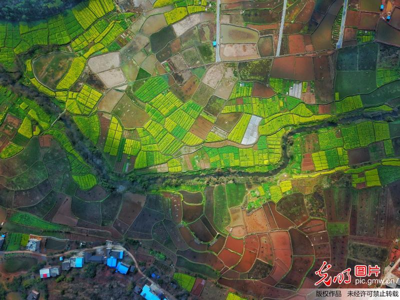Aerial scenery of blooming flowers in C China's Hunan Province