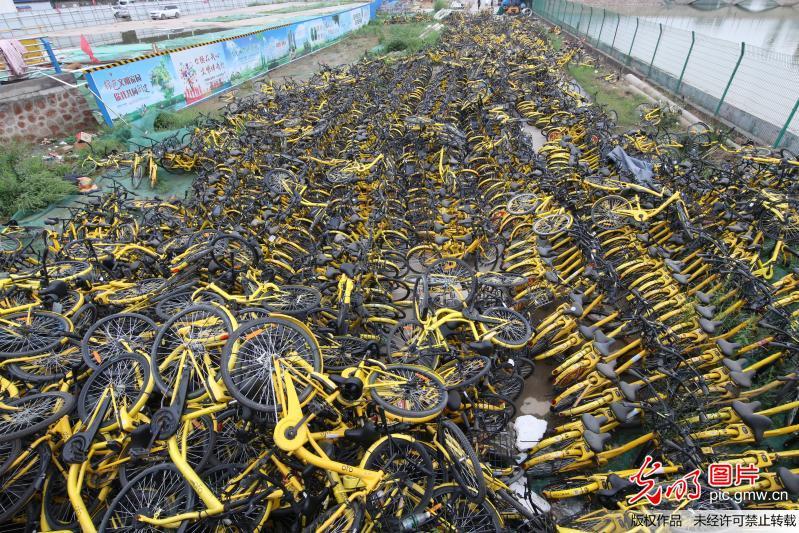 郑州数千辆损坏小黄车堆积河边令人心痛