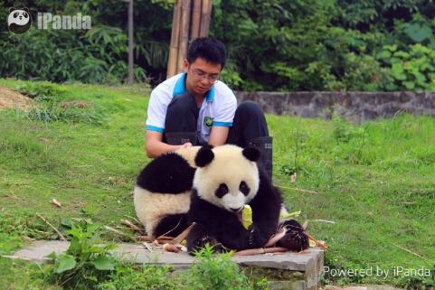 I love bamboo!