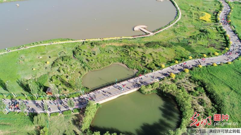 3000千人徒步穿越湿地迎接世界环境日