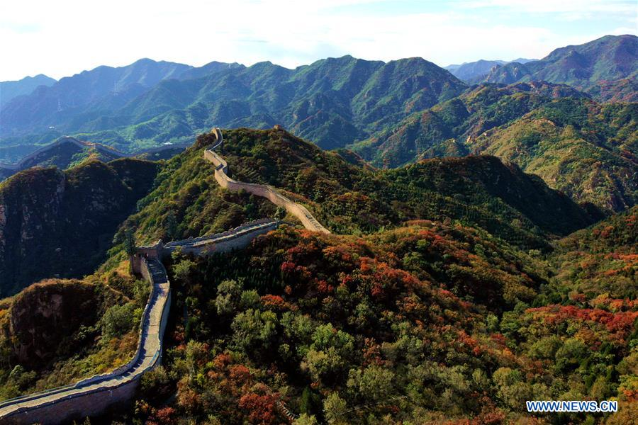 #CHINA-BEIJING-GREAT WALL-RED LEAVES(CN)
