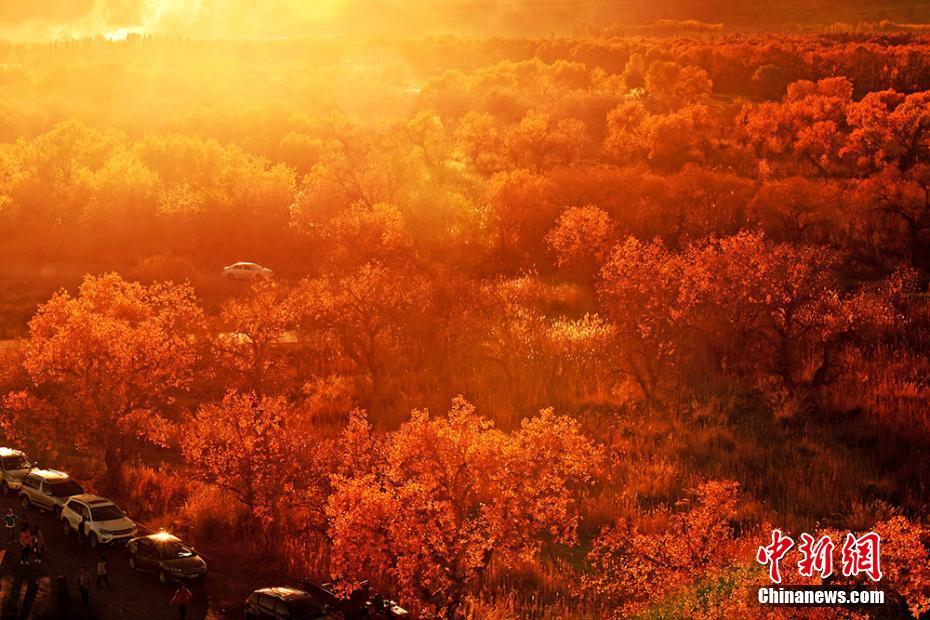 Amazing autumn scenery attracts tourists in NW China's Xinjiang
