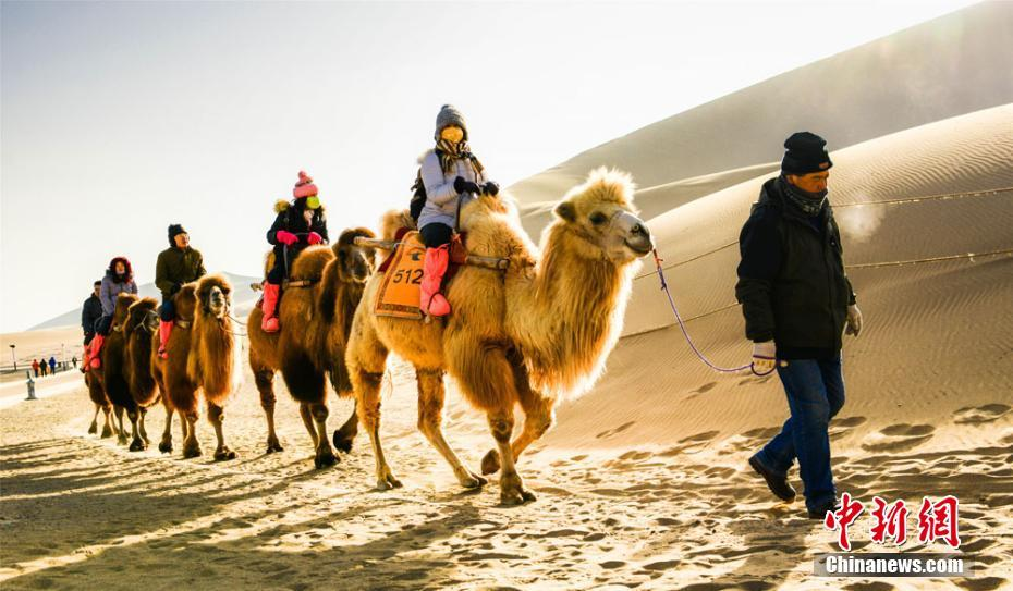Tourists attracted by camel riding in NW China's Duhuang