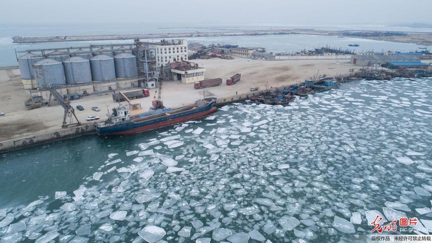 山东莱州湾海冰初现