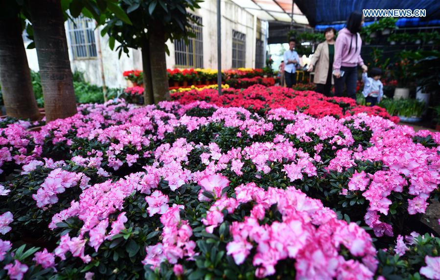 CHINA-HAINAN-FLOWER MARKET (CN)