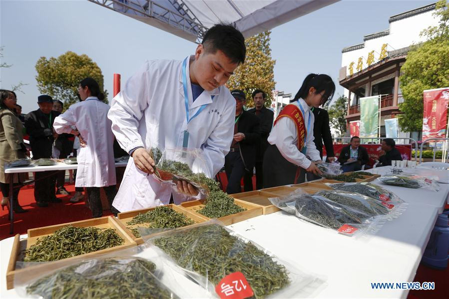 #CHINA-ANHUI-HUANGSHAN-TEA COMPETITION (CN)