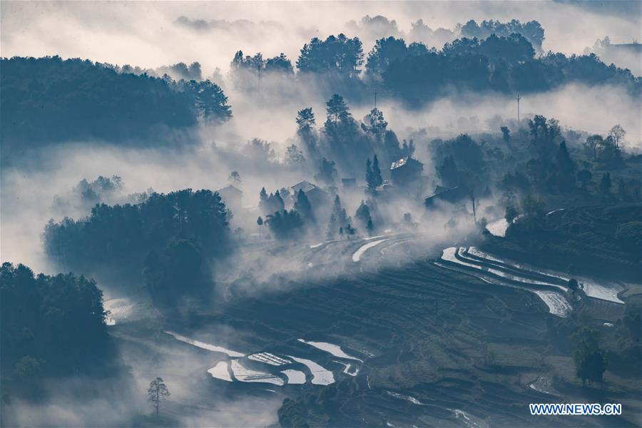 #CHINA-CHONGQING-WEATHER-FOG (CN)