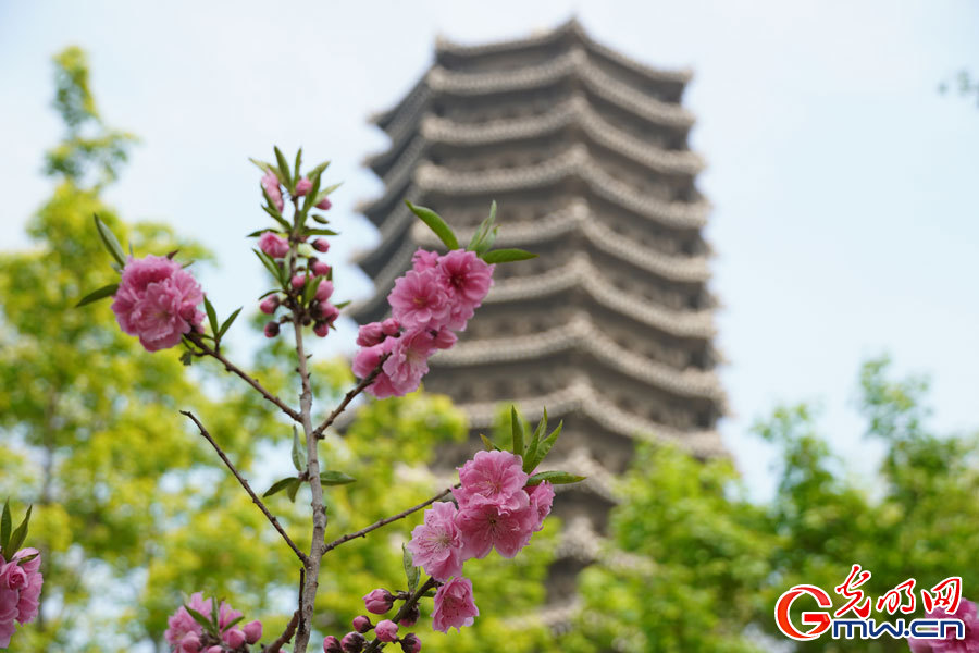 Spring scenery at Peking University in Beijing