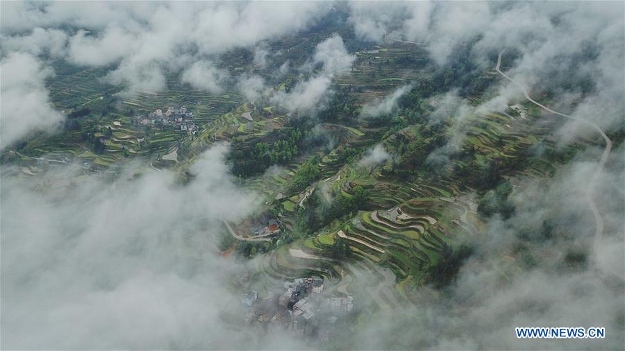 CHINA-GUIZHOU-LIPING-TERRACED FIELDS (CN)