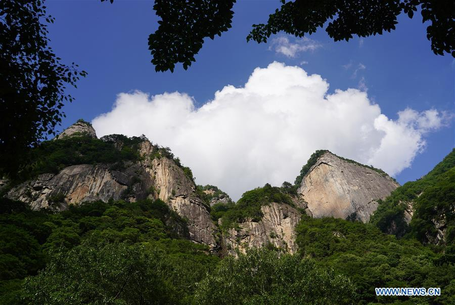 CHINA-SHAANXI-QINGFENGXIA-FOREST PARK (CN)