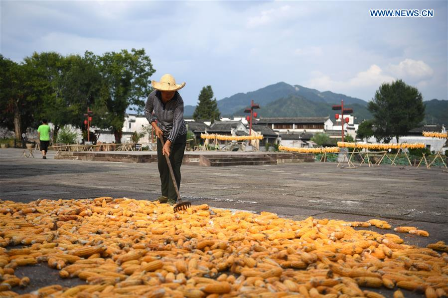 CHINA-ANHUI-HUANGSHAN-AIRING CORNS (CN)