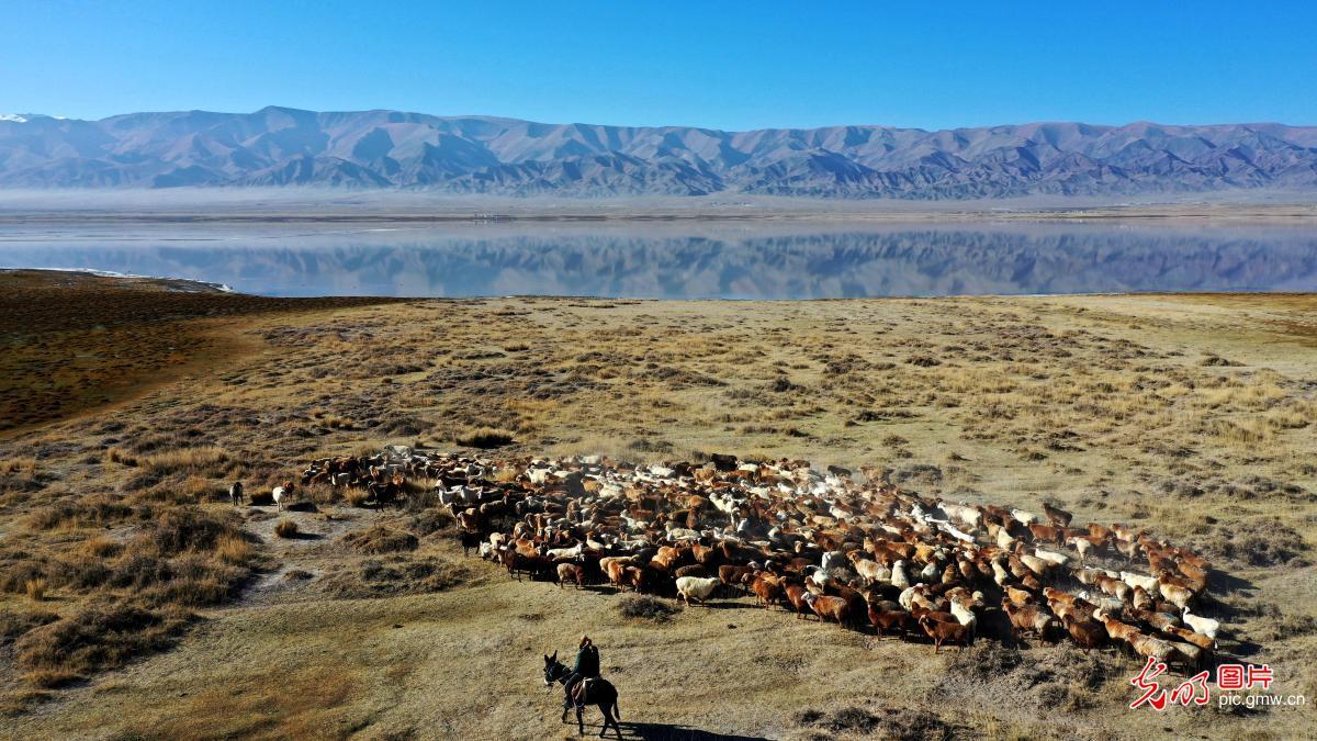 Autumn scenery of Huancai Lake in NW China's Xinjiang
